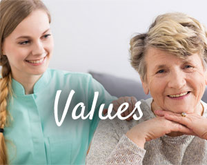 values-300x239
