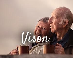 vision-300x239